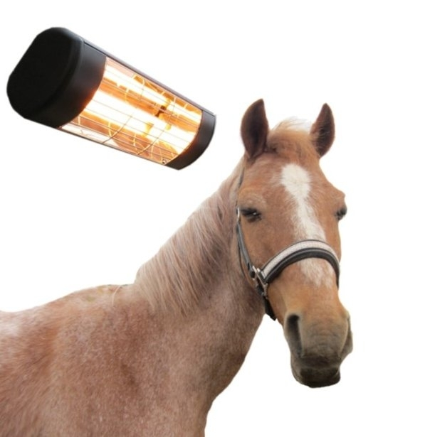 Equine Solariums and Infra-red Heating
