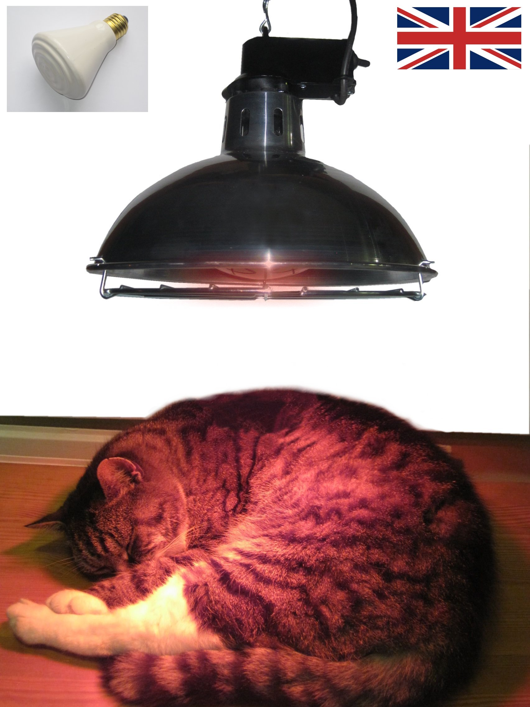 Leisure Heating Pet Heater with 250W Dull Emitter and 2 Heat Settings