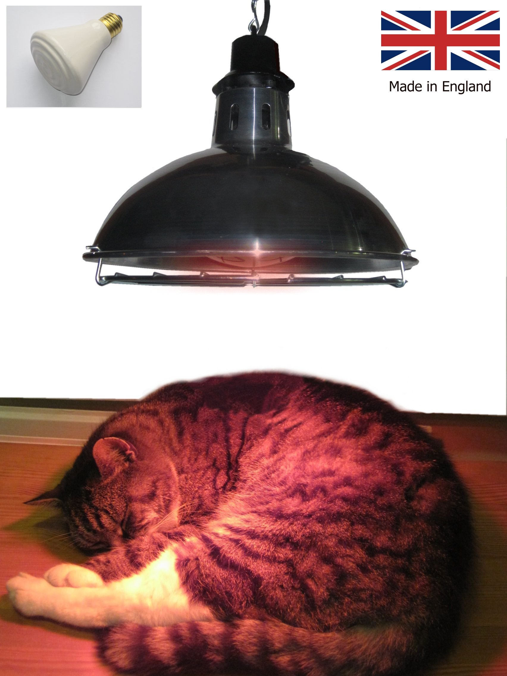 Leisure Heating Pet Heater with 250W Dull Emitter